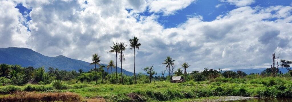 Lore Lindu National Park, Sulawesi, Indonesia