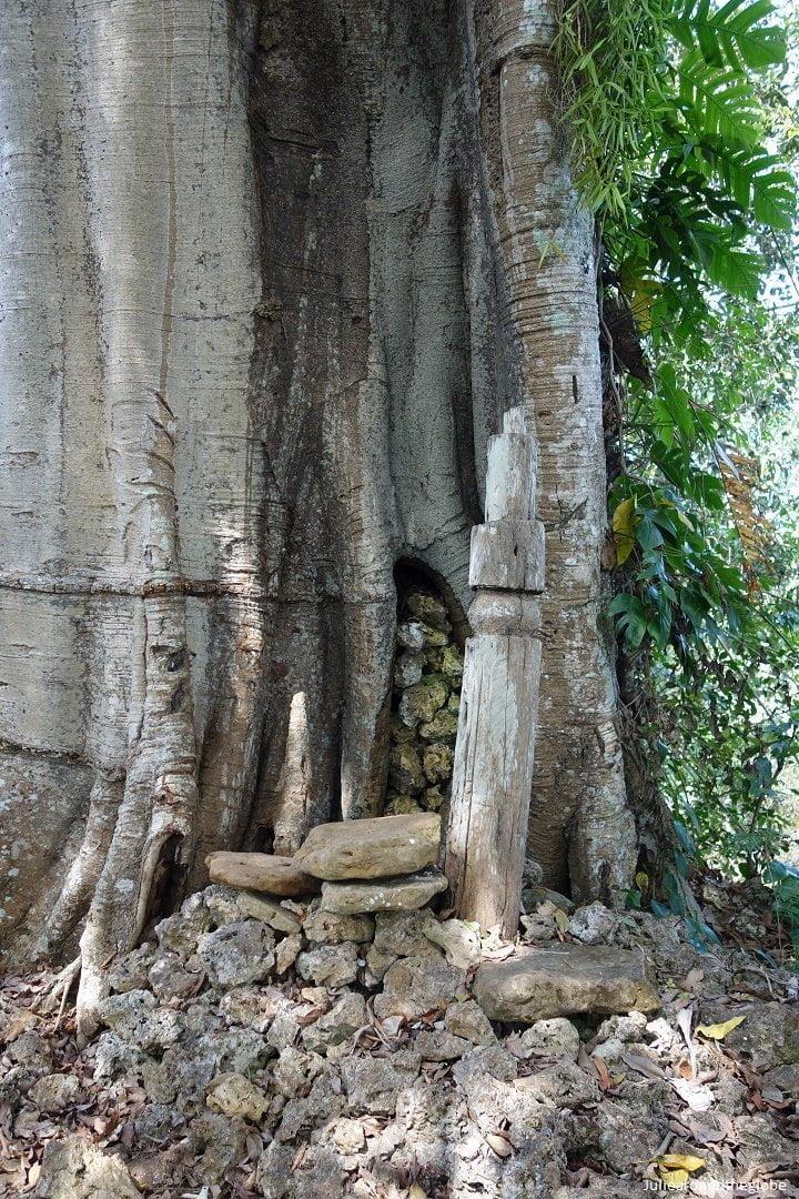 Totem and sacrificial altar, None, Timor, Indonesia