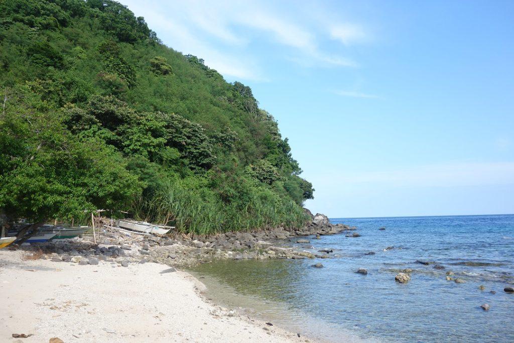 diving apo island dumaguete, Philippines