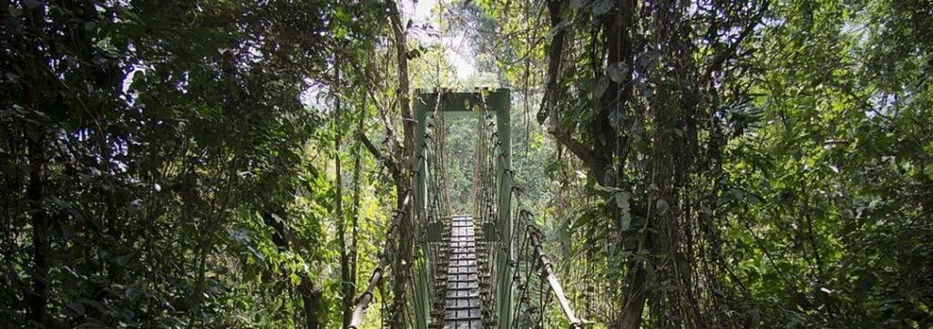 Gunung Mulu National Park, Malaysia