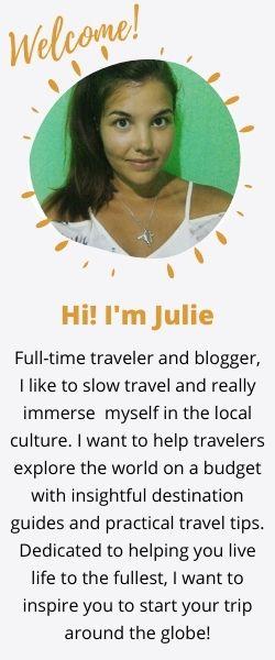 Julie Around the Globe mini bio